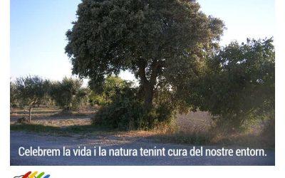 Celebrem la vida i la natura tenint cura del nostre entorn. Bones festes!