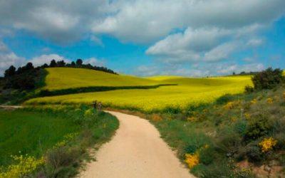 Natura i espiritualitat