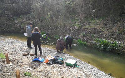 Inspecció fluvial del riu Ondara